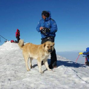 At Mount Ararat Peak